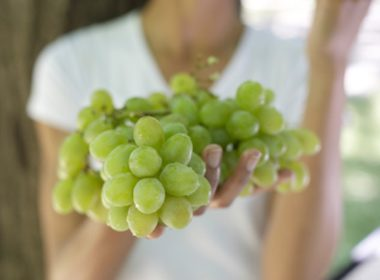 Eat more grapes