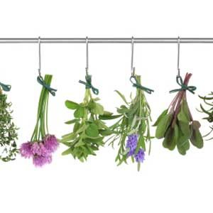 1. Dry Your Herbs