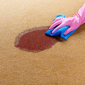 4. Get Rid of Greasy Carpet Stains
