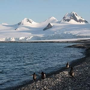 7. Coldest Continent on Earth: Antarctica