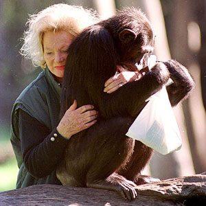 2. Millionaire Pets: Kalu (Chimpanzee), $80 million