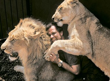 The Lion Whisperer: Fighting to Save an Endangered Species
