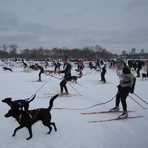 Snowiest Destinations: Minneapolis-St.Paul, Minnesota