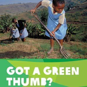18. Oxfam Vegetable Garden