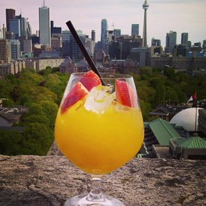 The Roof Lounge - Toronto, Ontario