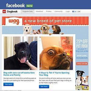2. Pet Facebook
