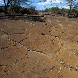 6. Puako Petroglyph Archaeological District