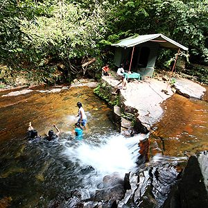 6. Camp in the Sri Lankan Rainforest