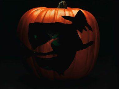 Pumpkin Pattern #14: Flying Witch
