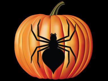 Pumpkin Pattern #17: Scary Spider