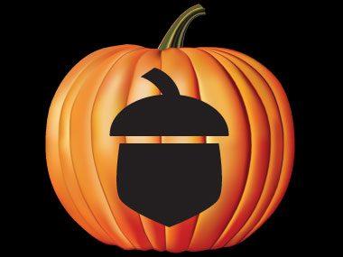 Pumpkin Pattern #26: Acorns