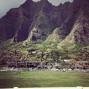 7. Hollywood Loves Hawaii