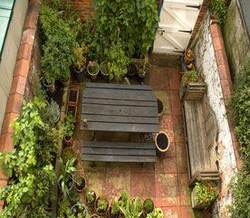 Make Your Own City Garden