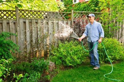 Landscape and Garden Planning: Where to Put Your Garden for Maximum Yield