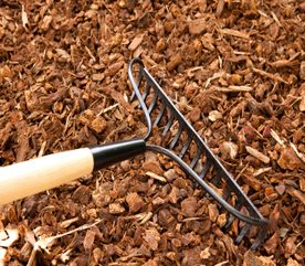 Garden Tips: Removing Leaves from Your Landscape