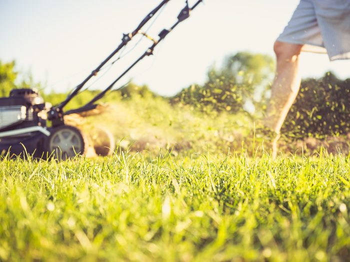 2. Shrink the Size of Your Lawn