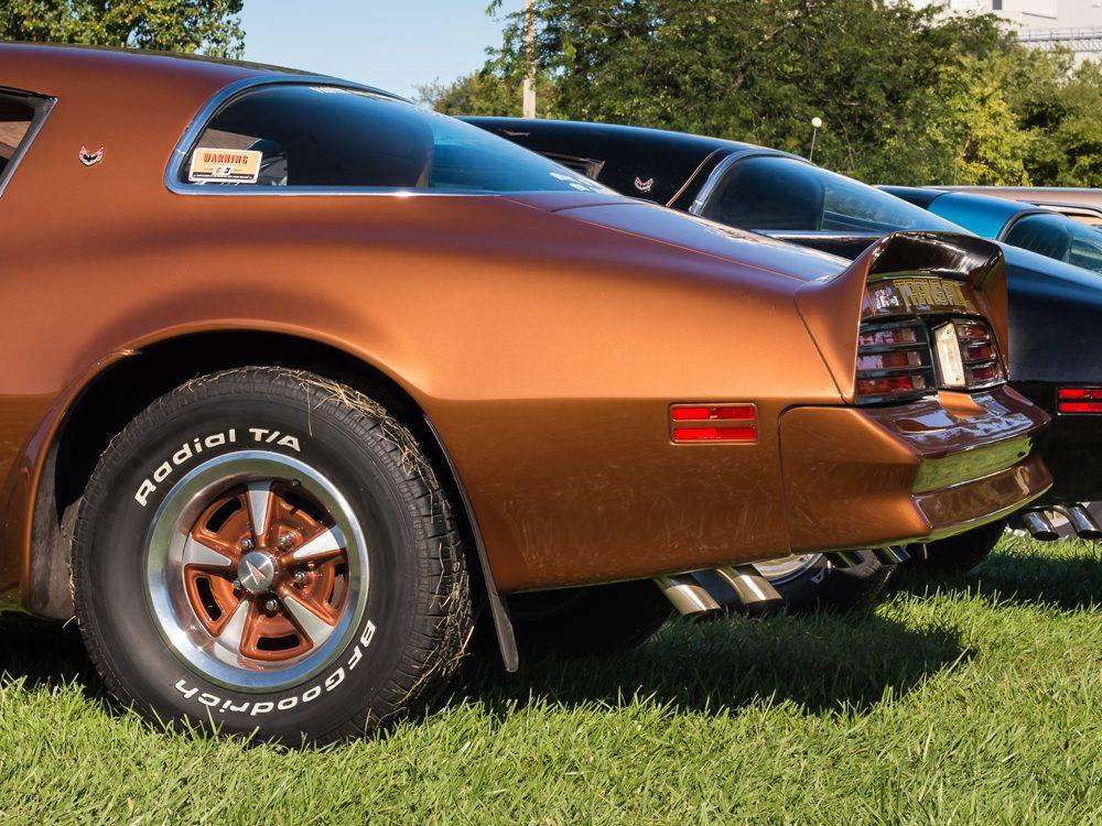 8. The 1977 Pontiac Firebird Esprit from