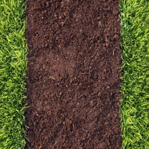 Green Manure Soil Conditioner