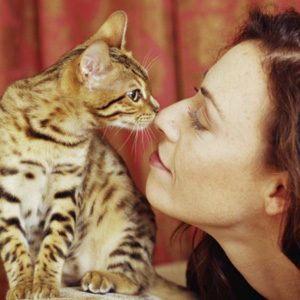 Did You Know Cats Communicate Via Nose?