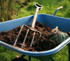 Unusual Landscaping Ideas to Help Your Garden Grow