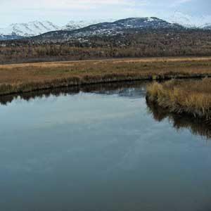 6. Anchorage Coastal Wildlife Refuge
