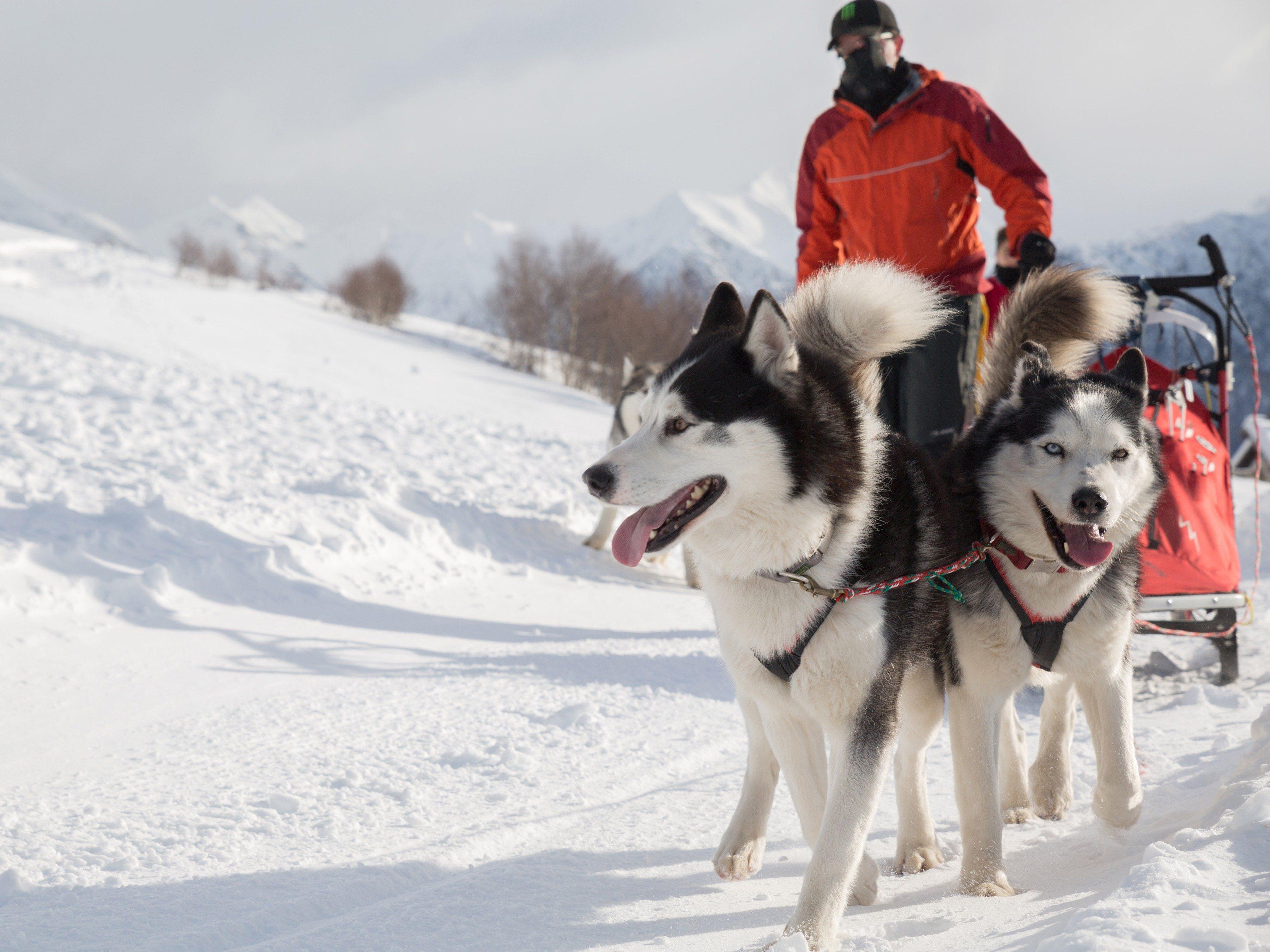 Snowiest Destinations: Anchorage, Alaska