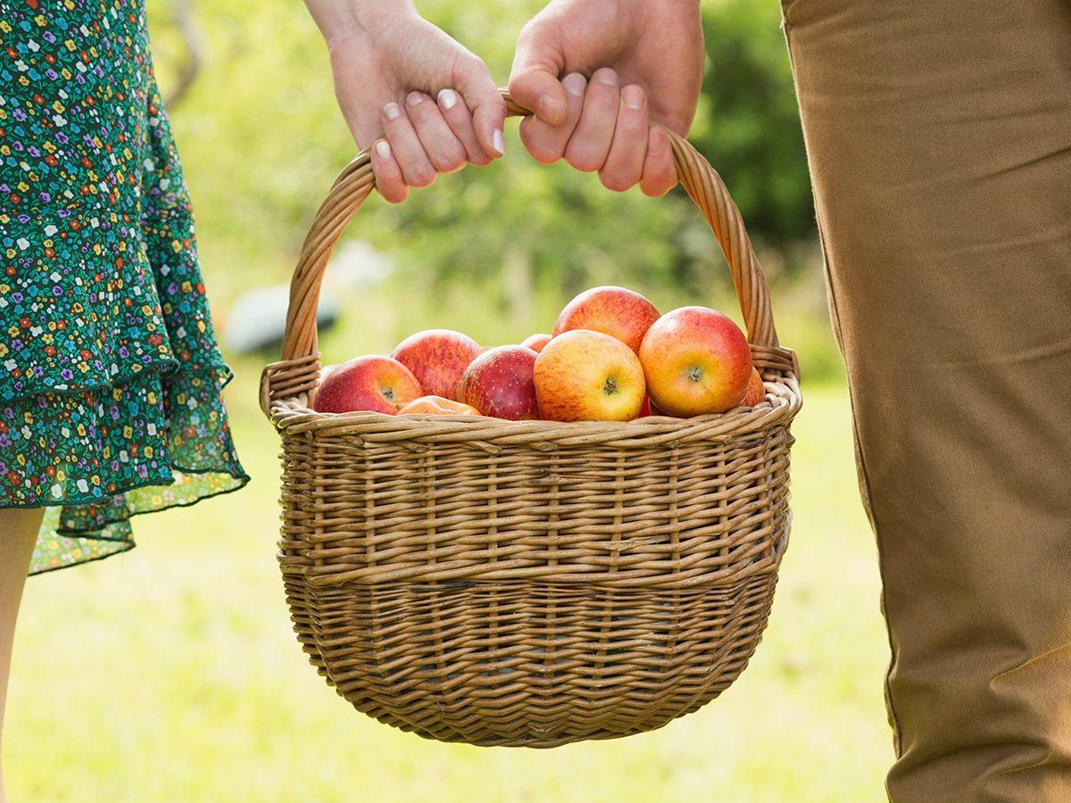 Apple benefits - basket of apples