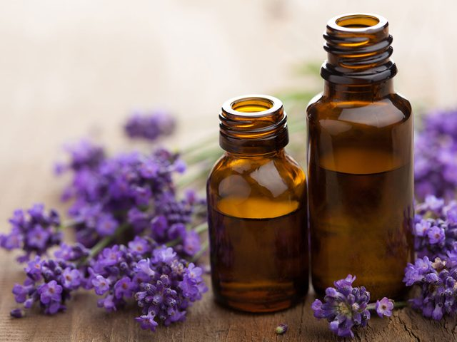 Essential oils and lavender
