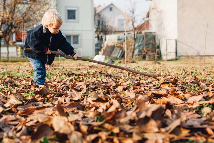Boy raking leaves on lawn