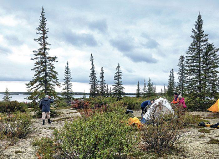 Canadian Arctic's Barren Lands