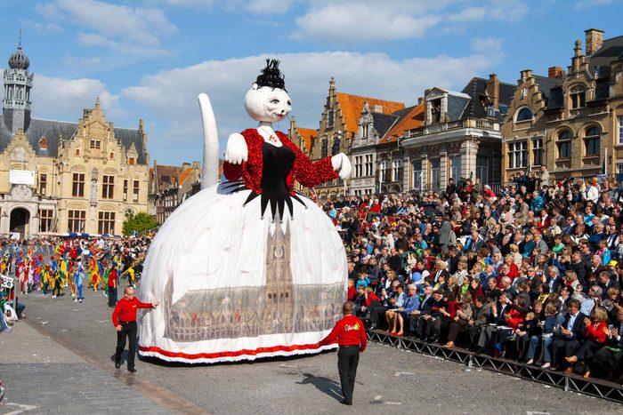 Cat Festival in Belgium