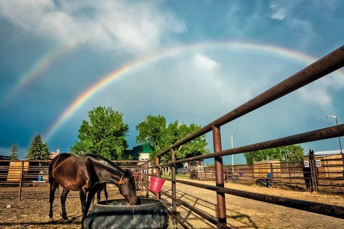 Rainbow in Olds College, Alberta
