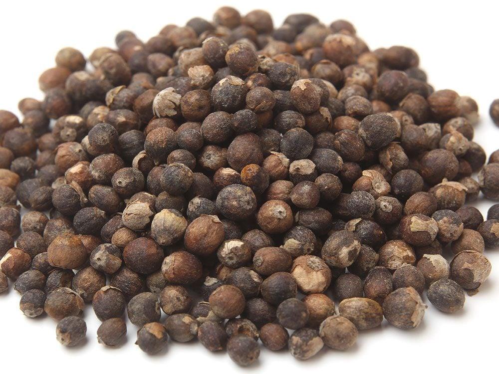 Chaste tree berry extract