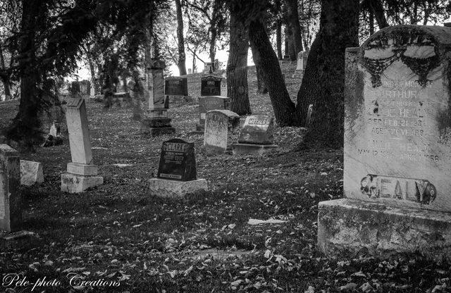 Edmonton cemetery at dusk