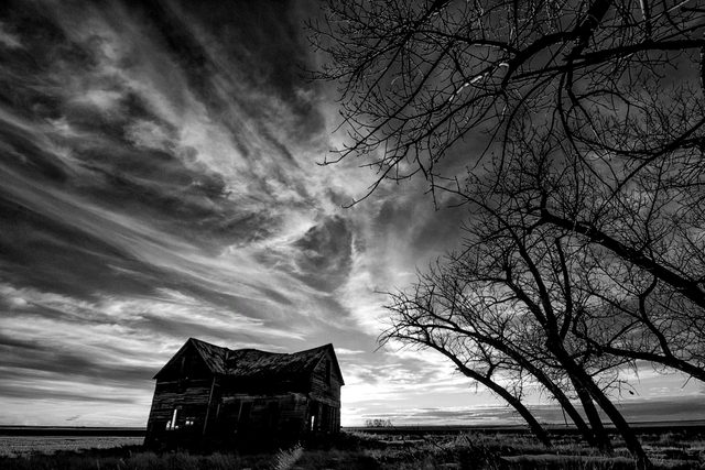 Black and white photo of farmhouse and tree