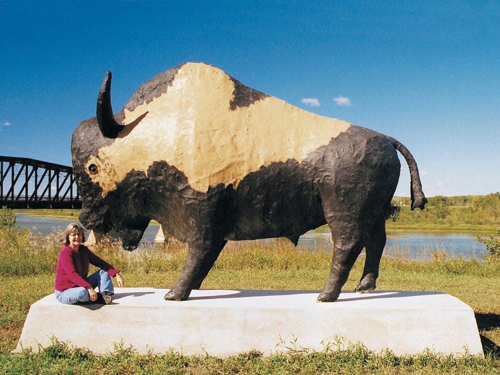 Giant bison statue in Saskatoon
