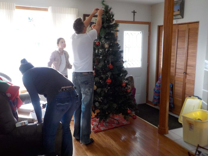 Family putting up the Christmas tree