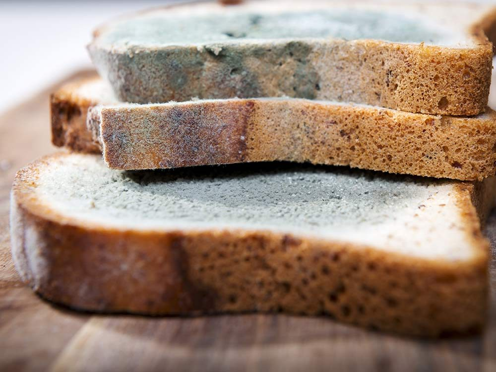 Moldy bread slices