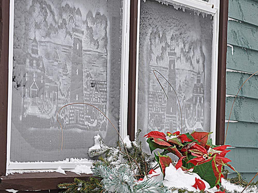 Spray painted window screens