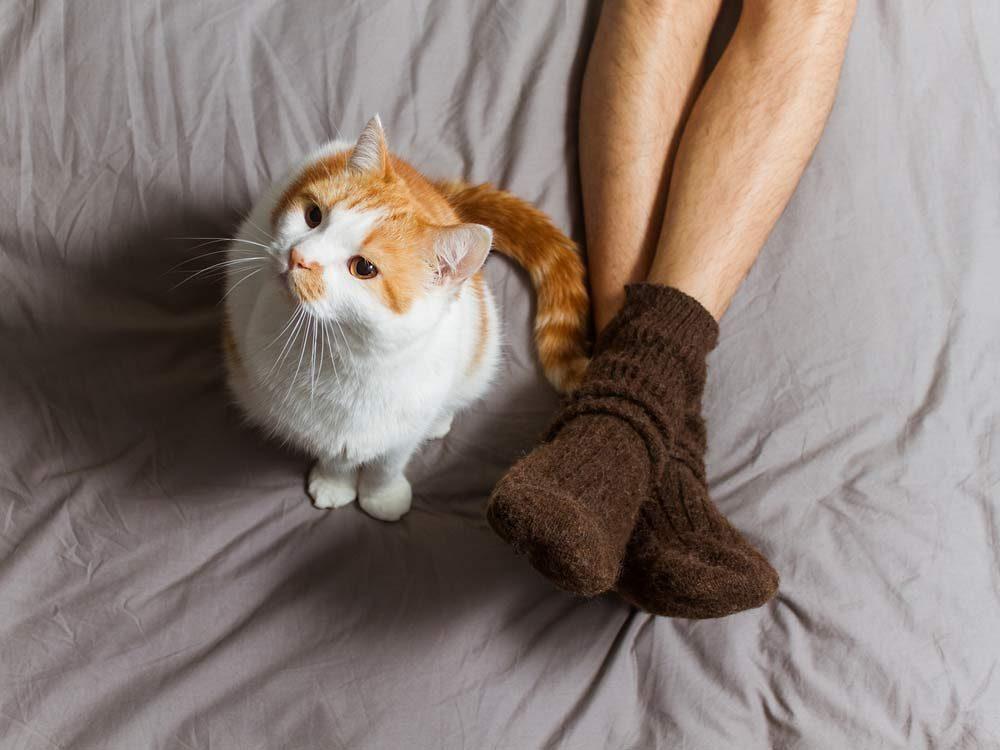 Wear fluffy socks to avoid dusting