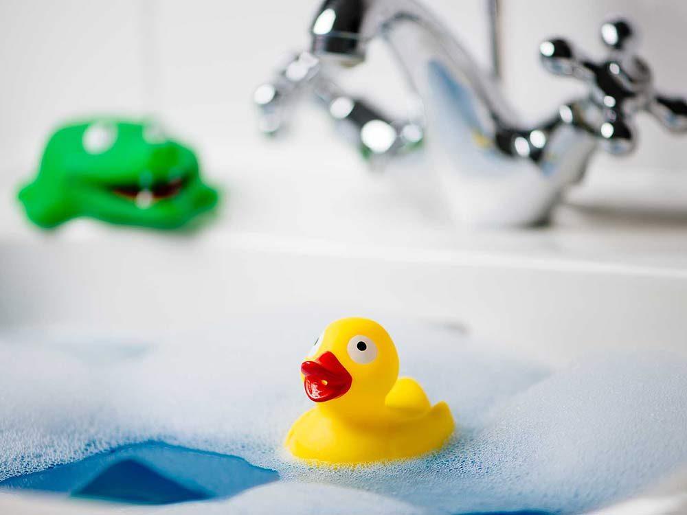 Rubber duck in bathtub