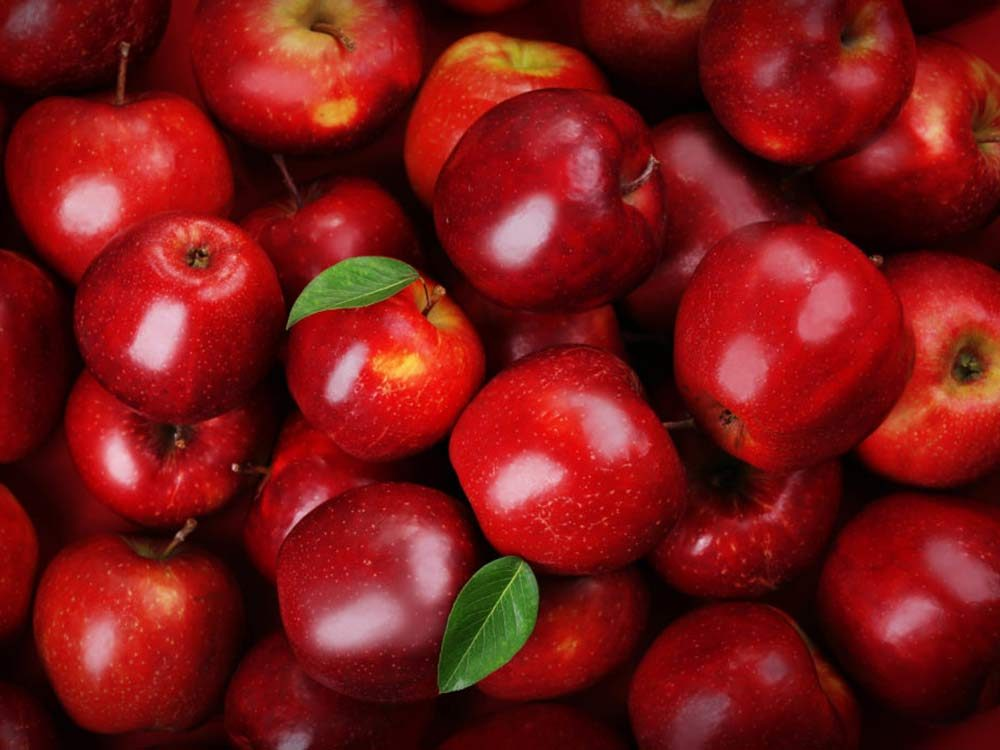 Pile of fresh red apples