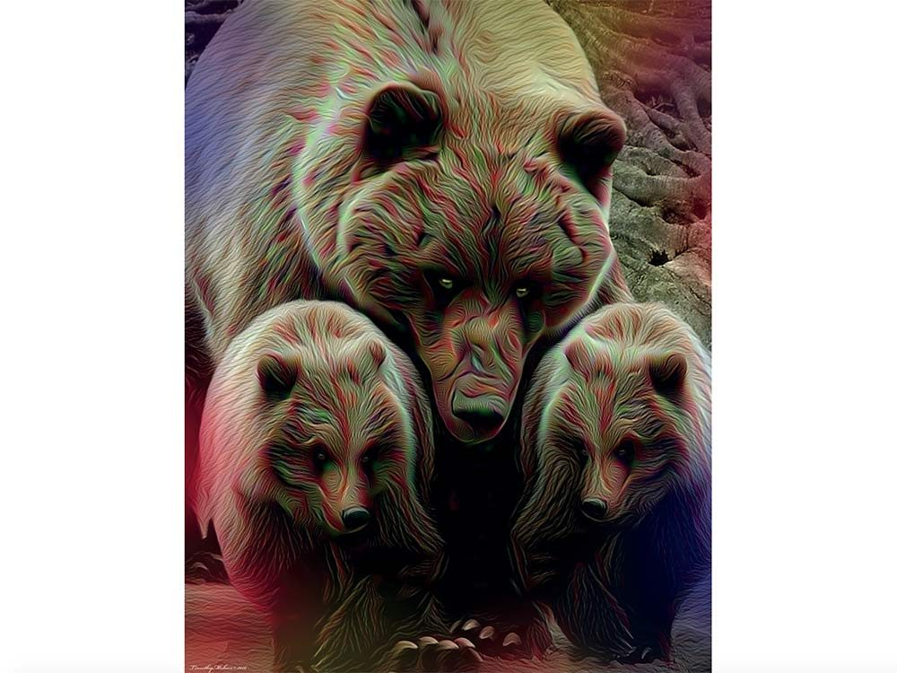 Artwork by Timothy Mohan of grizzly bears