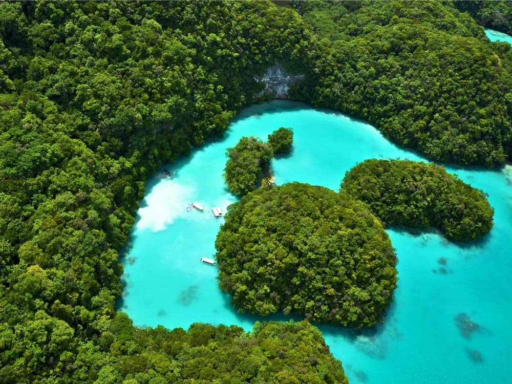 Milky Way Lagoon in The Republic of Palau