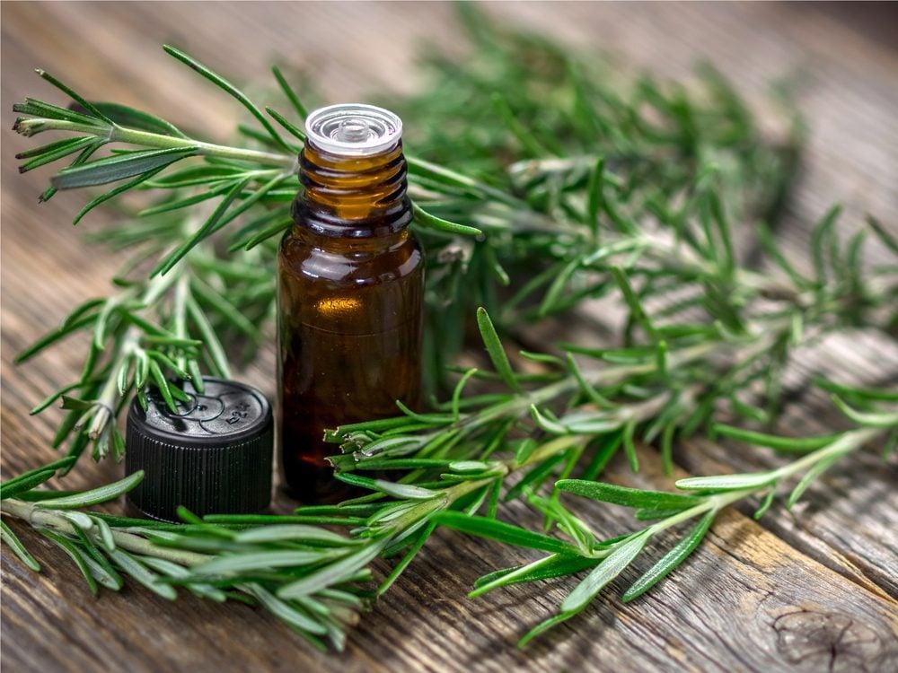 Use thyme and rosemary oil for head rubs as a homemade headache remedy