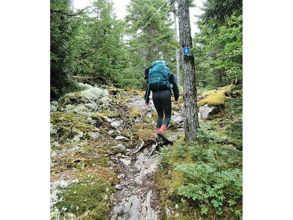 Hiking trail in Fundy National Park