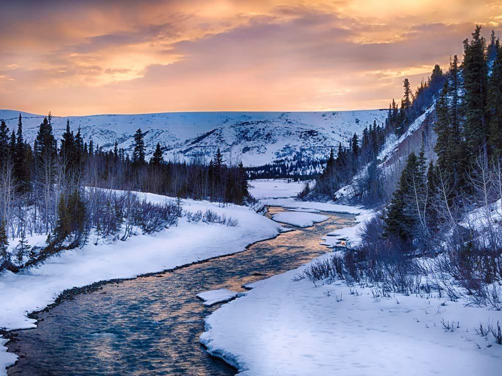 Alaskan wilderness