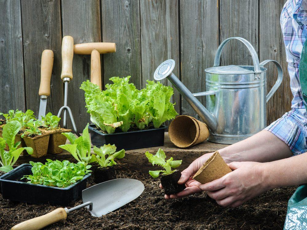 Gardening relieves stress