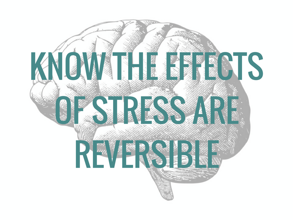 Know the effects of stress are reversible to calm down