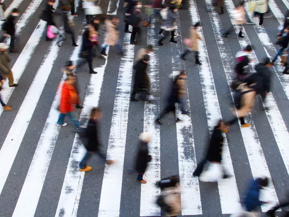 Busy zebra crossing